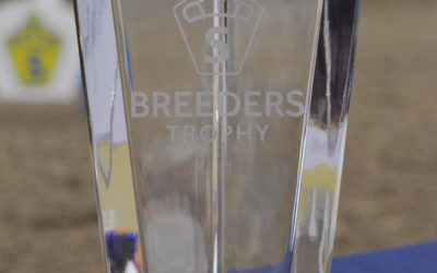 Breeders Trophy 2018